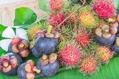 De Vruchten van Thailand Stock Afbeeldingen