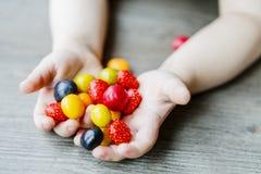 De vruchten in weinig kind overhandigen - jong geitje Royalty-vrije Stock Afbeeldingen