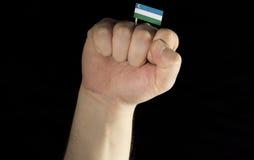 De vuist van de mensenhand met de vlag van Oezbekistan op zwarte wordt geïsoleerd die Stock Afbeelding