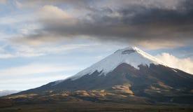 De vulkaan van Cotopaxi in Ecuador Royalty-vrije Stock Afbeeldingen