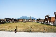 De vulkaan van de Vesuvius in Pompei Stock Foto