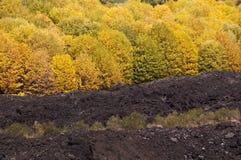 De vulkaan van Etna, Sicilië, Italië Royalty-vrije Stock Foto's