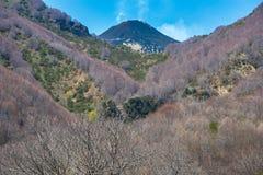 De vulkaan van Etna in Sicilië, Italië Royalty-vrije Stock Foto