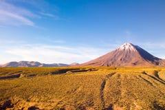 De Vulkaan van Licancabur in Altiplano Stock Afbeeldingen