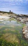 De Vuurtoren van Beavertail Stock Fotografie