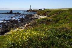 De Vuurtoren van het duifpunt, Davenport Californië royalty-vrije stock fotografie