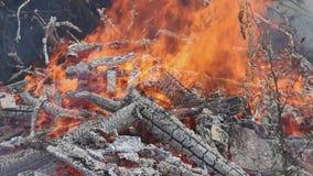De vuurzee en de rook van de brand, hellen verticaal panorama over stock footage
