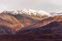 De Waaierdaling Autumn Season van Alaska van de dalingskleur Sneeuw Afgedekte Piek Royalty-vrije Stock Fotografie