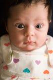De waakzame Pasgeboren Zuigeling van de Baby Stock Fotografie