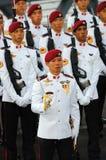De wacht-van-eer van het commando stock fotografie