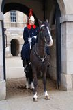 De Wachten van het paard, Londen Stock Afbeelding