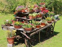 de wagen festooned met vele potten van bloemen in de weide Stock Afbeelding