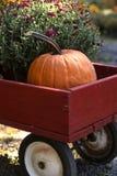 De Wagen van de pompoen Royalty-vrije Stock Foto