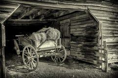 De Wagen van het paard Stock Foto