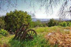 De Wagen van het platteland stock fotografie