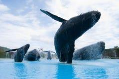 De walvis van de gebochelde beeldhouw Stock Foto's