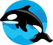 De Walvis van de orka stock illustratie