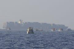De Walvisobservateurs van Srilankan door vrachtschip worden verkleind dat Royalty-vrije Stock Foto's