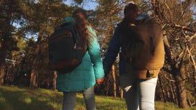 De wandelaar Girs in een pijnboombos de toerist geniet van het leven en aard de reis van het vakantieavontuur Gelukkige familiere stock footage