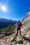 De wandelaar neemt een rust waarnemend een bergpanorama Mont Blanc-mas stock fotografie