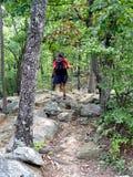 De Wandelaar van de berg Stock Afbeelding