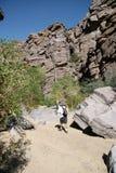 De Wandelaar van de canion Stock Foto