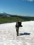 De Wandelaar van de sneeuw Stock Foto's