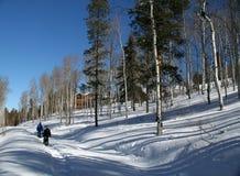 De wandelaar van de sneeuwschoen, schaduwen van espen Stock Afbeeldingen