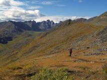 De wandelaar van Yukon Stock Foto's