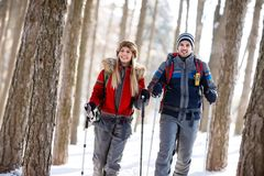 De wandelaars koppelen in de winter wandeling in bos Stock Foto's
