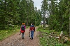 De wandelaars op een berg slepen Stock Foto's