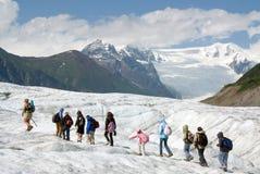 De Wandelaars van de dag op de Gletsjer van de Wortel Stock Fotografie