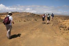 De wandelaars vechten winden bij Ka Lae, ken ook als Zuidenpunt, Hawaï royalty-vrije stock fotografie