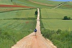 De wandelende pelgrims van Caminofrances in landelijk landschap Royalty-vrije Stock Foto