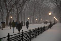 De Wandelgalerij, Central Park Royalty-vrije Stock Fotografie