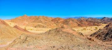 De wandeling in Eilat stock fotografie
