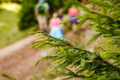 De wandeling van de berg Stock Foto