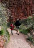 De wandeling van de vader en van de zoon Royalty-vrije Stock Afbeeldingen