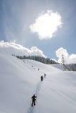 De wandeling van de winter Stock Afbeeldingen