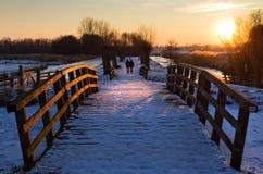 De wandeling van de winter Stock Foto