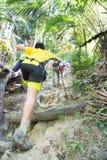 De wandeling van omhoog een tropische bosheuvel Stock Foto's