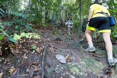 De wandeling van omhoog een tropische bosheuvel Royalty-vrije Stock Fotografie