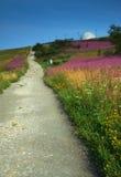 De wandeling van omhoog het spoor Stock Foto