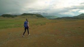 De wandeling van de vrouw Stijging in de bergen Vrouwenreiziger met rugzak op mooi de zomerlandschap stock footage