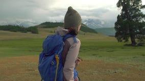 De wandeling van de vrouw Stijging in de bergen Vrouwenreiziger met rugzak op mooi de zomerlandschap stock video