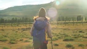 De wandeling van de vrouw Stijging in de bergen Vrouwenreiziger met rugzak op mooi de zomerlandschap Zonnige avond stock videobeelden