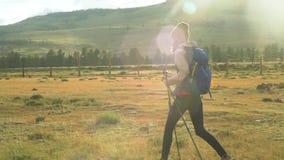De wandeling van de vrouw Stijging in de bergen Vrouwenreiziger met rugzak op mooi de zomerlandschap Zonnige avond stock footage