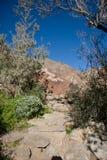 De wandelingssleep van de berg Stock Foto