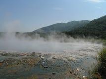 De warm waterlentes in het Nationale Park van Semliki, Oeganda royalty-vrije stock afbeelding