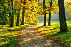 De warme herfst Royalty-vrije Stock Afbeeldingen